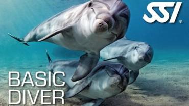 Santorini scuba basic diver